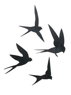 heine home Wanddeko Vögel - schwarz