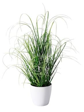 Gasper Grasbusch mit Topf - grün